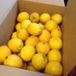 【巷で噂の塩レモンを作ってみました。】