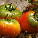 【てっぺんトマト】これぞトマトの中のトマト!!